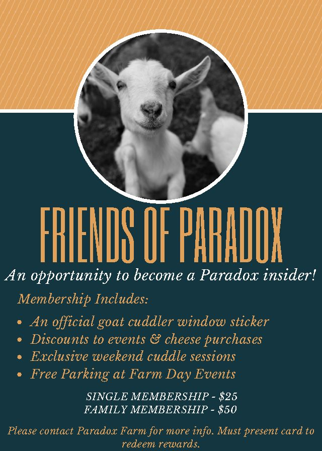 Friends of Paradox